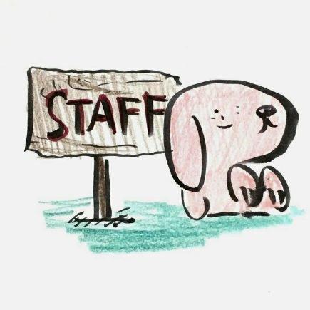 @kirinninu_staff