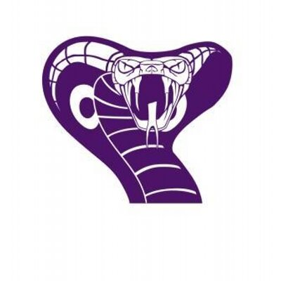 Image result for purple cobra