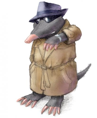 CrawleyTownMole