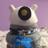 @RustyGoodDalek1 Profile picture
