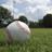 sin⚾野球垢