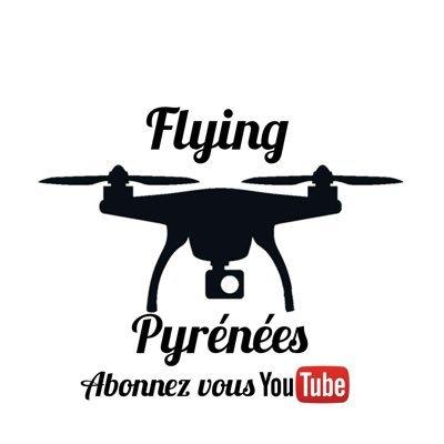 flyingpyrenees