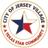 JerseyVillageTX's avatar
