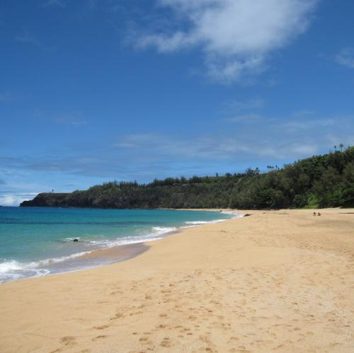 Kauai Beaches: Kauai Beaches (@Kauaibeaches)