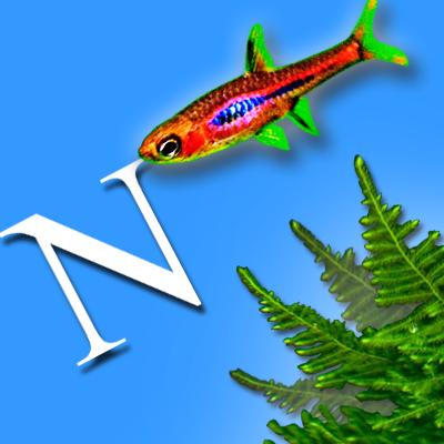 natura,produtos natura,natura ekos,perfumes natura,creme da natura,sabonete natura,natura online,comprar natura