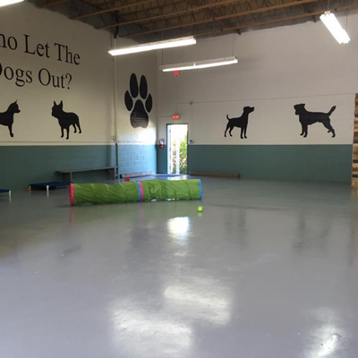 Embark Doggy Daycare On Twitter Slow