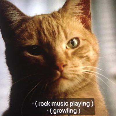 sopranos rock cat