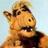 @SquidPodRadio Profile picture