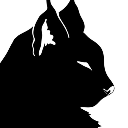 Lynxotic ✨