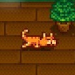 Video Game Cats