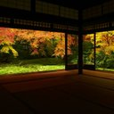 hoshizora___rin