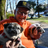 roberto_duria's avatar'