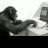 @paul_reiswig Profile picture
