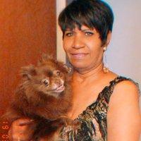 Debra Fox (@slyfox6057) Twitter profile photo