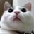 amasawa_seiji's avatar'
