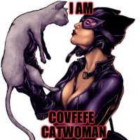 Covfefe Catwoman 😺😺😺