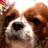 realrealitysis's avatar
