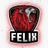 Team Felix
