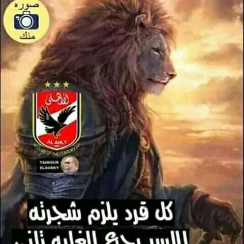 اسد مصر والاهلاويه