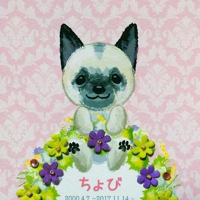 ち ょ び 織 姫-ソーシャルディスタンス