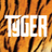 Tyger Group