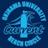 沖縄大学ダイビングサークルCURRENT
