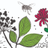Pollinators for Maesincla