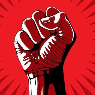 Decolonisation through Revolution (@DecolonisationR) Twitter profile photo