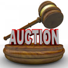 Orland Auto Auction >> Orland Public Auto Auction Orlandauto Twitter