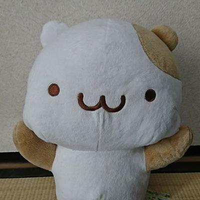 ぬこざき → @nagasaki600