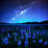 Michael_Amn19