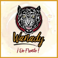 Wanady