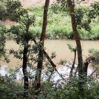 Cabanillas Verde y Sostenible