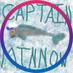Little Captain Minnow