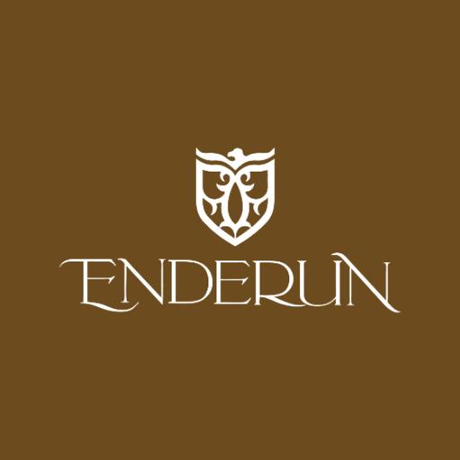 @EnderunColleges