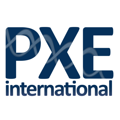 PXE International's profile