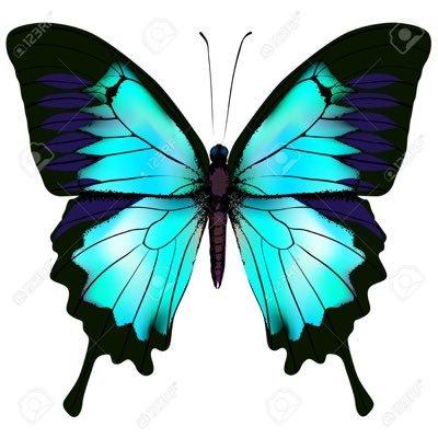 papillonfab