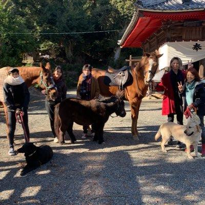 白井 志村動物園