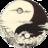 ZenShadow