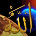 @alshayae