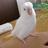 Profile picture of inco_rety_bot