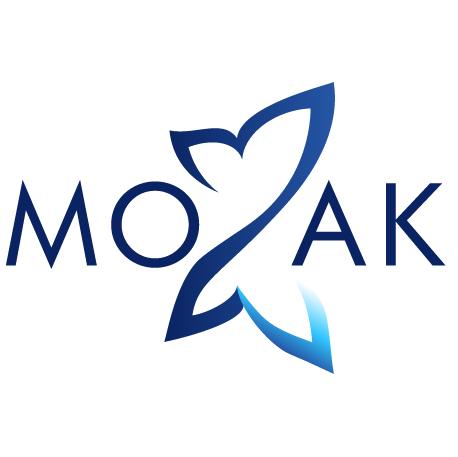 Mozak Design - WordPress Websites
