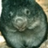 @Furlozza Profile picture