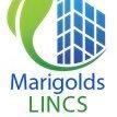 Marigolds Lincs