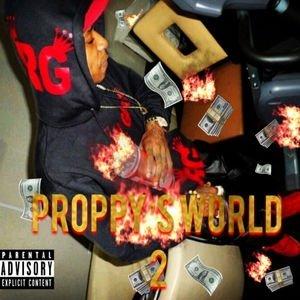 RGM Proppy