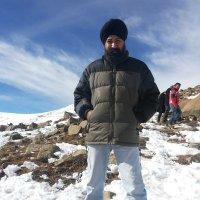 Inder singh ( @Indersi72050338 ) Twitter Profile