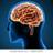 Tips & Tricks To Prevent Alzheimer's