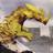 古代角竜 アガタロス