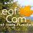 Visit Indiana Leaf C