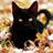 Ami_Sanada1's avatar'